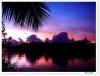 エロマンガ島という島が存在する。