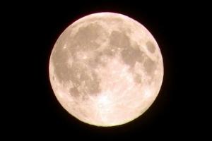 今年 一番大きい満月を見よう!!