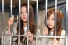 女子刑務所  性実態 情報 動画 まとめ