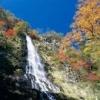 【紅葉】天滝で紅葉を楽しみながらハイキング 兵庫県