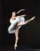 芸術www バレエの美しいポーズ